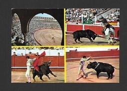 CORRIDA - TYPIQUE COURSE DE TAUREAUX - TOROS - BULLFIGHT - ANIMAUX - ANIMALS - MULTIVIEWS - BY SAVIR - Corrida