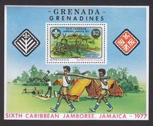 Scouting  1977 Grenada # 19943 - Scouting