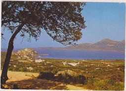 Haute Corse,calvi,capitale économique De La Balagne - Calvi