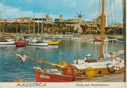 (MALL2648) MALLORCA. PALMA . MOLINOS - Mallorca