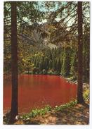 1987, Bolzano - Lago Di Tovel. - Trento