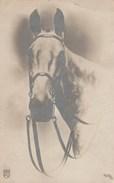 Tête De Cheval - Carte Photo NRM 7010/3 - Non écrite - Illustrateurs & Photographes