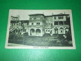 Cartolina Treviso - Civico Museo 1929 - Treviso
