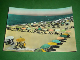Cartolina Marina Di Massa - La Spiaggia - 1957. - Massa