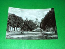 Cartolina Rovescala - Viale Frascati 1954 - Pavia