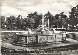 Y3709 Foligno (Perugia) - Fontana Al Parco Dei Canapè / Non Viaggiata - Foligno