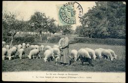 Cpa  Du  10 Pâturage à Ervy Aube -- Le Vieux Berger Et Son Troupeau - La Vie Aux Champs En Bourgogne     NCL93 - Ervy-le-Chatel
