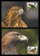 Belarus Maxicard 2016 Mih. 1113/14 Fauna. Rare Birds. Eagles (2 Maxicards) (joint Issue Belarus-Azerbaijan) - Belarus