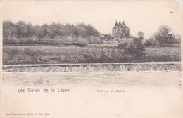Les Bords De La Lesse - Château De Wanlin - Nels, Bruxelles, Série 8 N° 100 - Houyet