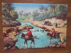 Scenes Et Types. Oued Dans La Palmeraie. CAP A30 - Algérie