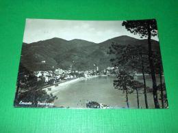 Cartolina Levanto - Panorama 1952 - La Spezia