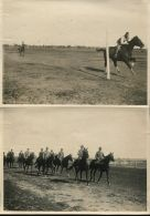 KING EDWARD VIII ROYAL TOUR COONAMBLE HORSE FACING NEW SOUTH WALES 1920 - Other Collections