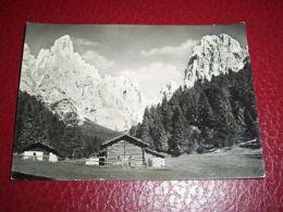 Cartolina Dintorni San Martino Di Castrozza 1950 Ca - Trento