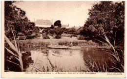 41 CELLETTES - Le Beuvron - Vue Sur La Villa Phelippeaux   (Recto/Verso) - Francia