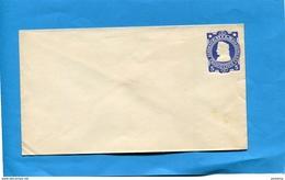 CHILI-Postal Stationery-  Lettre-enveloppe Entier Postal-neuve **5c  Bleu  - Colon Années 1895-00 - Chile