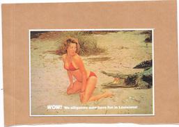 LOUISIANE - ETATS UNIS - Femme NUE - WOW!!  -  We Alligators Sure Have Fin In Louisiana - ORL - - Etats-Unis