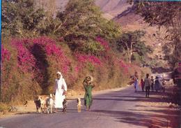 Eritrea. Ila Abered- The Province Of Senhert.. - Eritrea