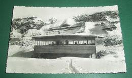 Cartolina Dolomiti Di Brenta - Bar Dello Spinale 1950 - Trento