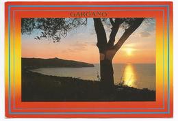 1987, Foggia - Gargano - Tramonto. - Foggia