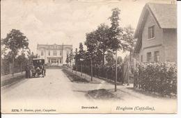 HOOGBOOM: Drevenhof Uitgever F. Hoelen (3376) - Kapellen