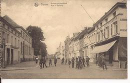 BOOM; Antwerpschestraat - Boom