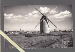 Bouin 85 - Moulin Des Ouches Bats - 9 X 14 Cm - Other Municipalities