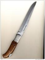 Couteau De Chasse Pliant Cran D´arrêt Avec étui Pradel Evolution - Knives/Swords