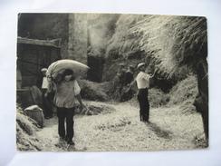 La France D'hier  Les Battages (le Porteur De Sacs )  1982 - Paysans
