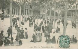 13 - Arles - La Promenade Des Lices - Arles