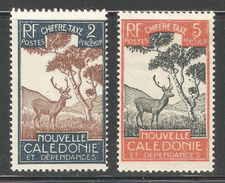 New Caledonia 1928,Postage Due,2c & 5c,Sc J19,J21,Mint Hinged*OG (SH-10) - Postage Due