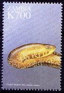 Zambia 1999 MNH, Chain Moray Eel, Echidna Catenata, Marine Life - Marine Life