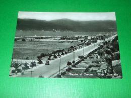 Cartolina Marina Di Carrara - Viale Litoraneo 1957 - Massa