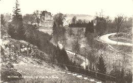 """Nettinne   """"  Le Château """"  Vue Prise De La Grotte - Somme-Leuze"""