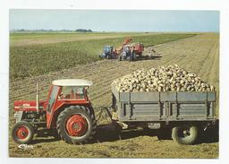 Loiret 45 - La Récolte De Betteraves Tracteur Agriculture écrite De Pithiviers A Orléans 1974 - Pithiviers