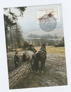 UN Vienna  FDC (maximum Card  HORSES PULLING LOG,  UN ANNIV Stamps Cover United Nations Horses Tree - Maximum Cards