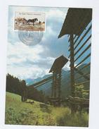 1985 UN Vienna  FDC Maximum Card  UN ANNIV , By MAXIPHIL  Horse Stamps Cover United Nations Horses - Maximum Cards