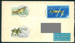D220- Postal Used Cover DDR Germany To Qatar. Fish. Space. Sports. - Germany