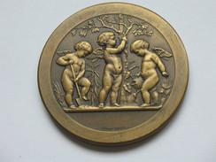 Très Belle Médaille - Prix D'HORTICULTURE  - Graveur ALPHEE DUBOIS   **** EN ACHAT IMMEDIAT *** - France
