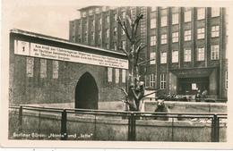 BERLIN - 1953 , Berliner Bärenzwinger , Am 30.11.1949 Eröffnet - Allemagne