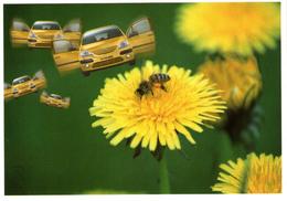 B 874 - Trasporti, Sport, Automobilismo, Citroen - PKW