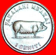 § CORN AND SOW: TONGA ★ 1 SENITI 1975! LOW START★ NO RESERVE! - Tonga