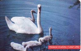 Slovakia, Chip Phonecard 23/1996, Tirage 50 000, Swan - Slovaquie