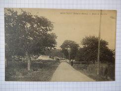 CPA - (77) - RARE- MONTIGNY SUR LOING - ROUTE DE MARLOTTE - R2335 - Autres Communes