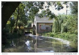 HERNE (Vlaams-Brabant) - Molen/moulin - Watermolen Sint-Waltrudis (of Rendriesmolen) Met Omgeving. Prachtkaart !!! - Herne
