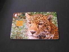 Belize Phonecards. - Belize