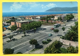 MARINA DI CARRARA Lido Di Paradiso  -  Auto Fiat , Bus - ITALIA .1965 - Carrara