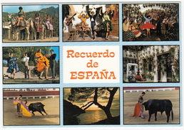 Recuerdo De Espana: TOROS, CORDILLA, Espana Tipica - Corrida