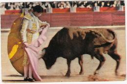 TOROS & CORDILLA - ( Pamplona, 1956) - Corrida