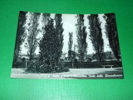 Cartolina Sant'Ilario D'Enza - Particolare Viale Delle Rimembranze 1960 - Reggio Emilia