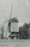 Geel - Larumse Molen - Gebouwd In 1846 - Geel